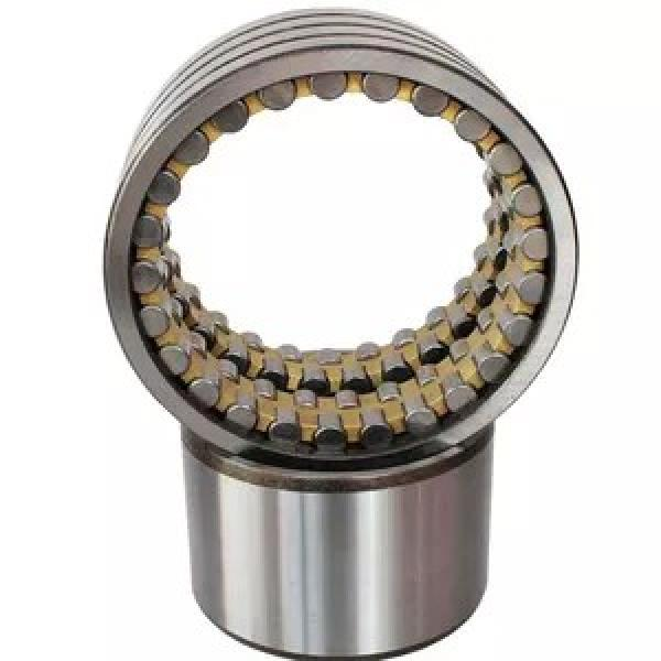 120 mm x 215 mm x 40 mm  NACHI NF 224 cylindrical roller bearings #1 image